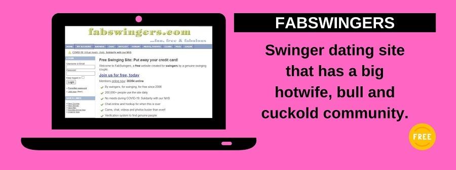 screenshot of fabswingers website